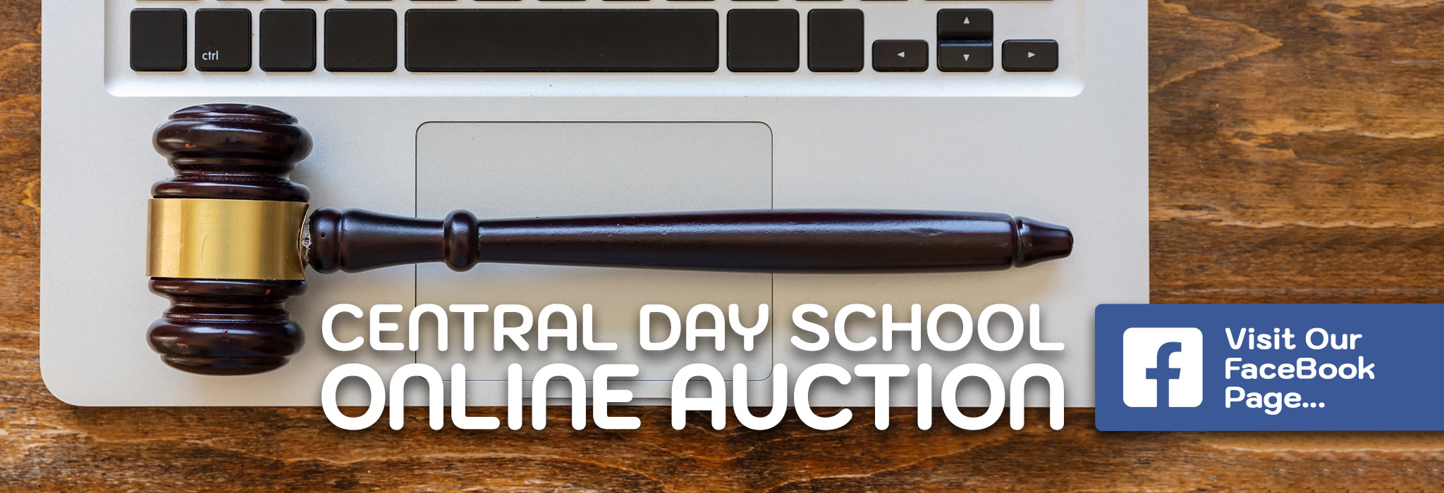 Dayschool Auction Background 2
